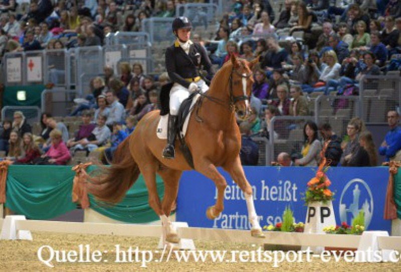 Quelle: http://www.reitsport-events.com/deutschland/events/faszination-pferd/